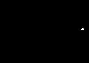 bajas logo v1